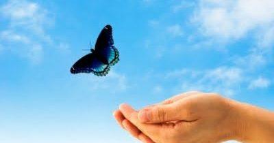 लेखांक ४: माझ्या प्रिय पत्नीच्या देवाघरी जाण्यामुळे माझ्या जीवनामध्ये आलेला अर्थ