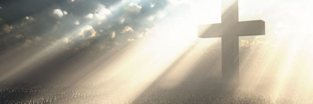 तुमच्यासाठी येशू कोण आहे                                                            वनिथा रिस्नर