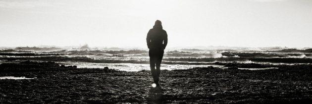 अपयशाला तोंड देताना                                                               लेखिका : वनिथा रेंडल
