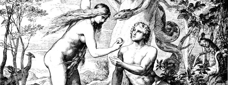स्वत:वर भरवसा ठेवण्याचा मूर्खपणा                                                        जॉन ब्लूम