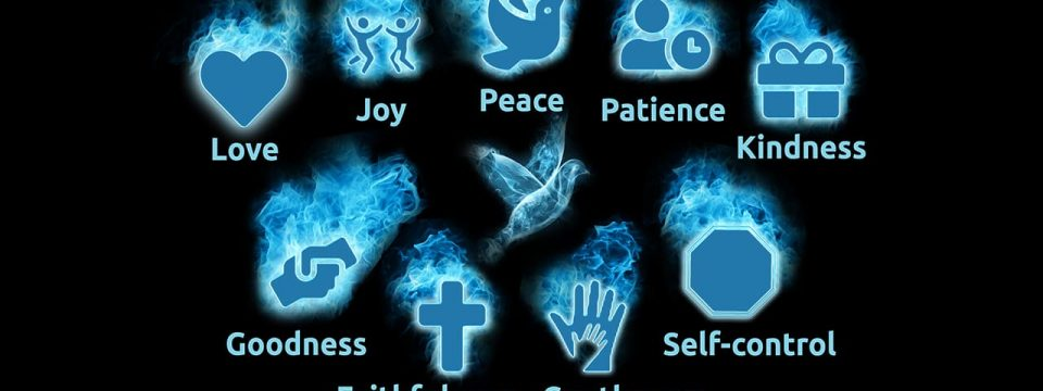 आत्म्याचे फळ लेखांक २                                                            स्टीफन विल्यम्स